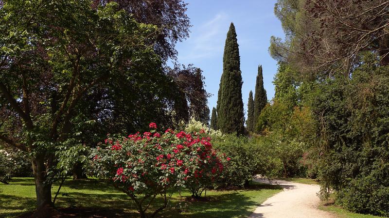 The Garden of Ninfa