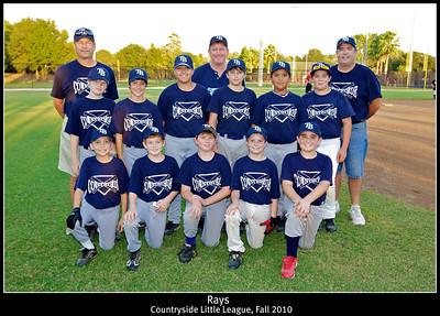 Countryside Little League 2010 Rays