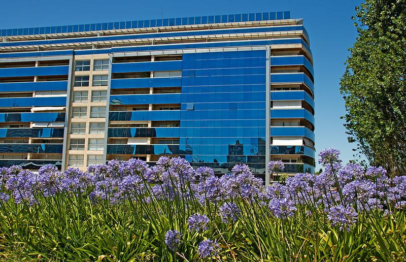 BuenosAires2010-1230A-222A.jpg