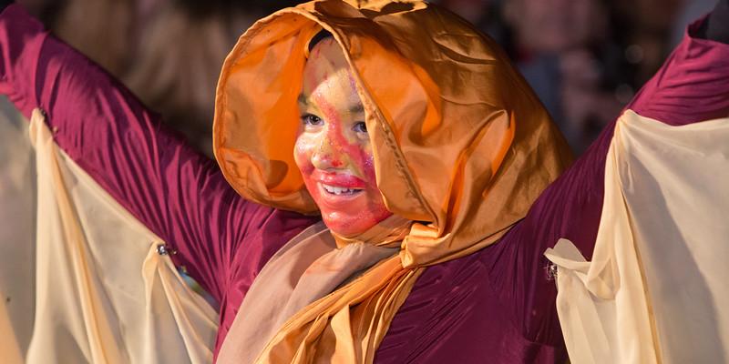 JV - Carnaval Ustaritz 2015 - 077.jpg