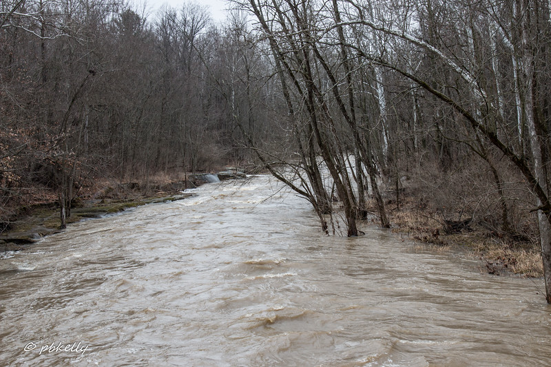 Black River flood 022218-2.jpg