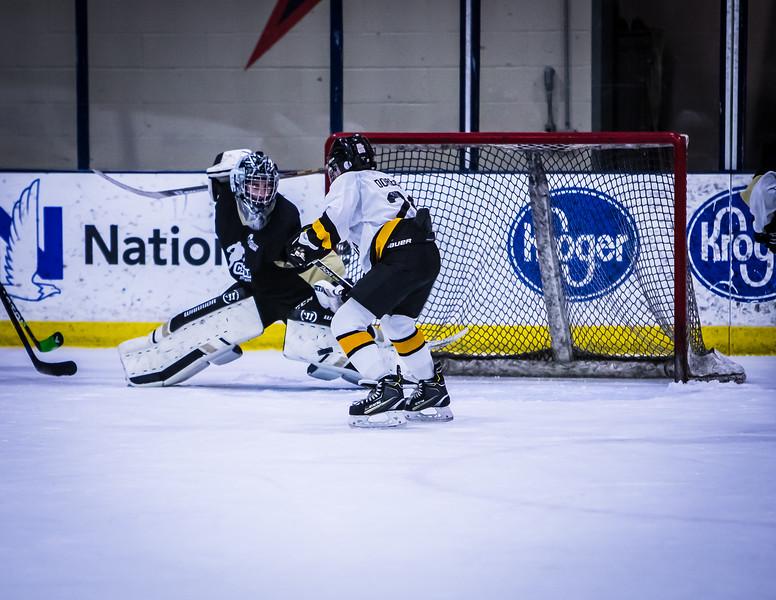 Bruins-252.jpg