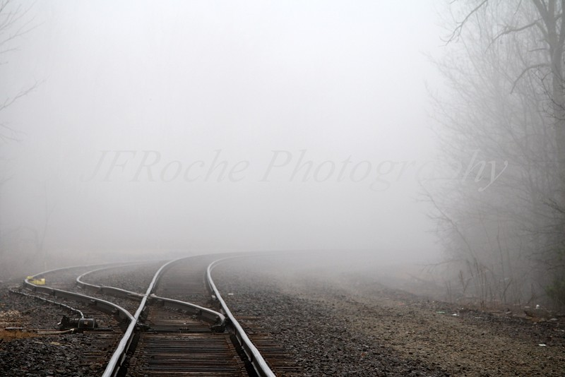 Into the mist 12x18.jpg