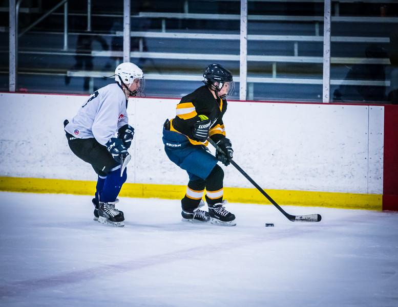 Bruins2-501.jpg