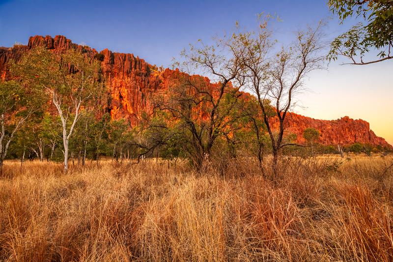 Glowing Napier Range