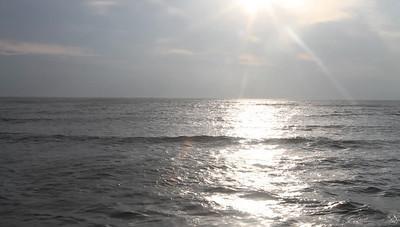 FV September 2010