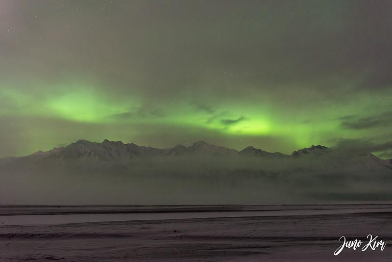 2019.02.01_Northern Lights-6106030-Juno Kim.jpg