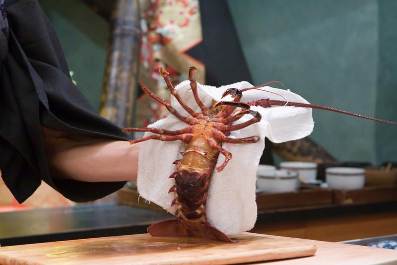 lobster jumping around