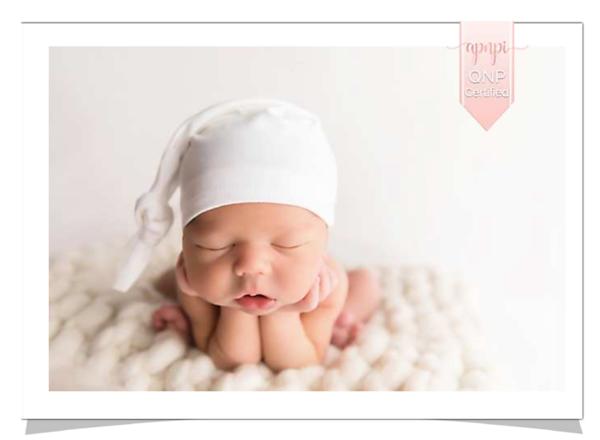 Professionally accredited newborn Photographer