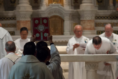 2016 Salesian jubilee, Saints Peter and Paul, SF