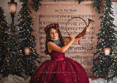 Stylized Christmas Sessions