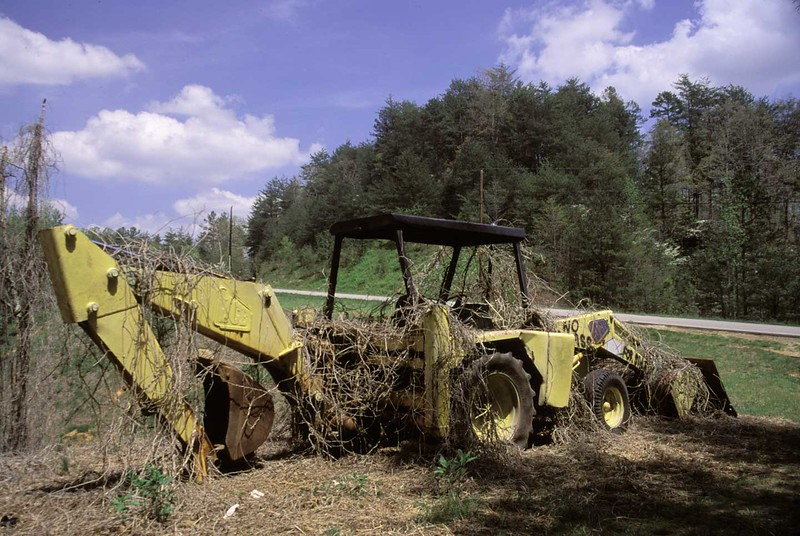 Abandoned back hoe near Dahlonega, Ga.
