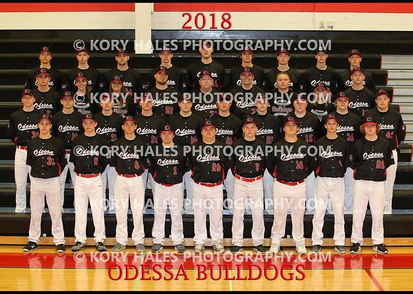 2018 OHS Baseball
