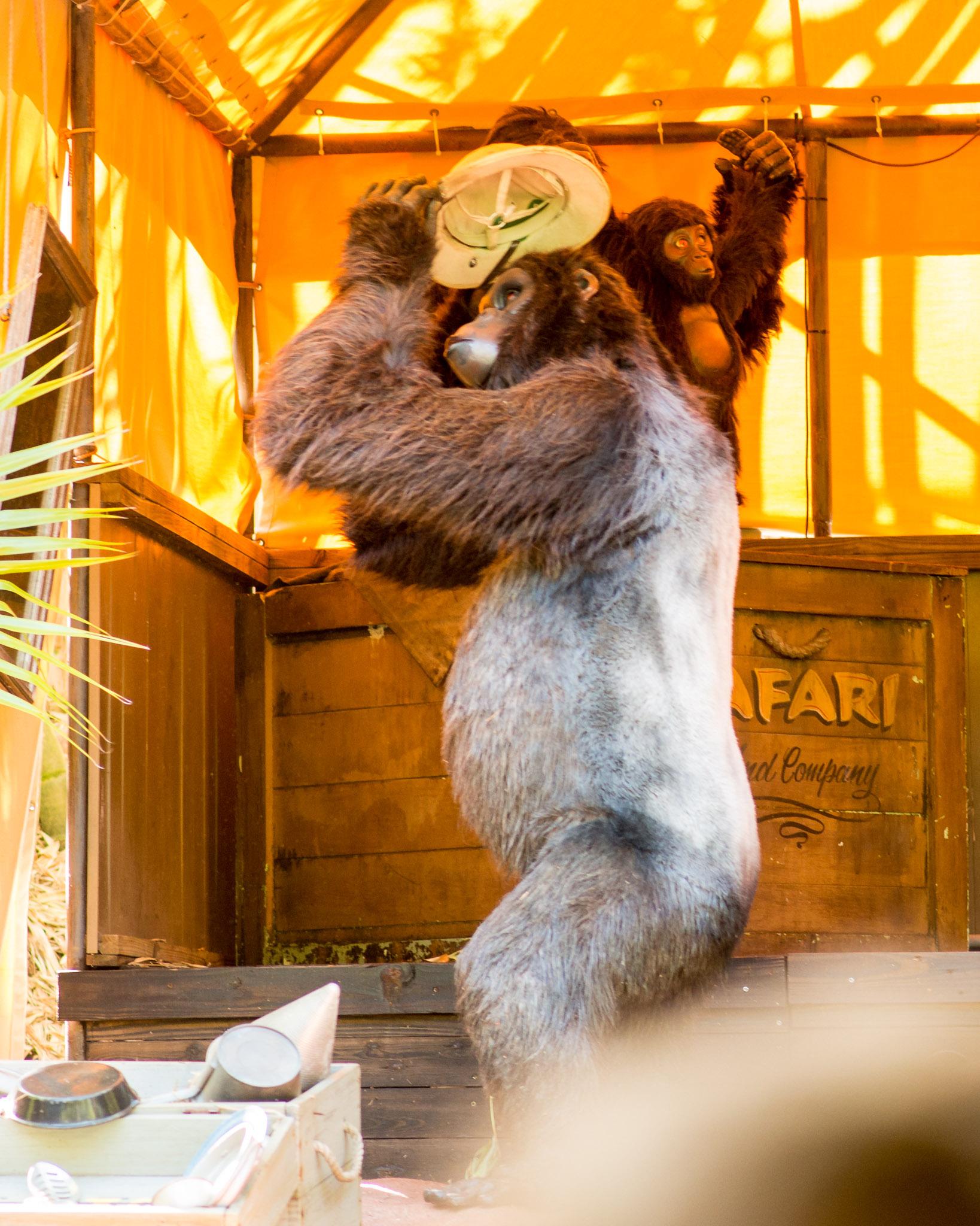 Jungle Cruise Gorilla - Walt Disney World Magic Kingdom