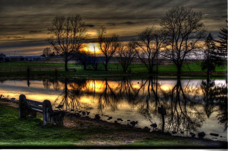pond - nolts pond wider.jpg