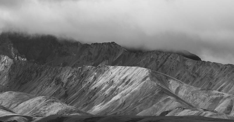 2017-08-14-Denali-68.jpg