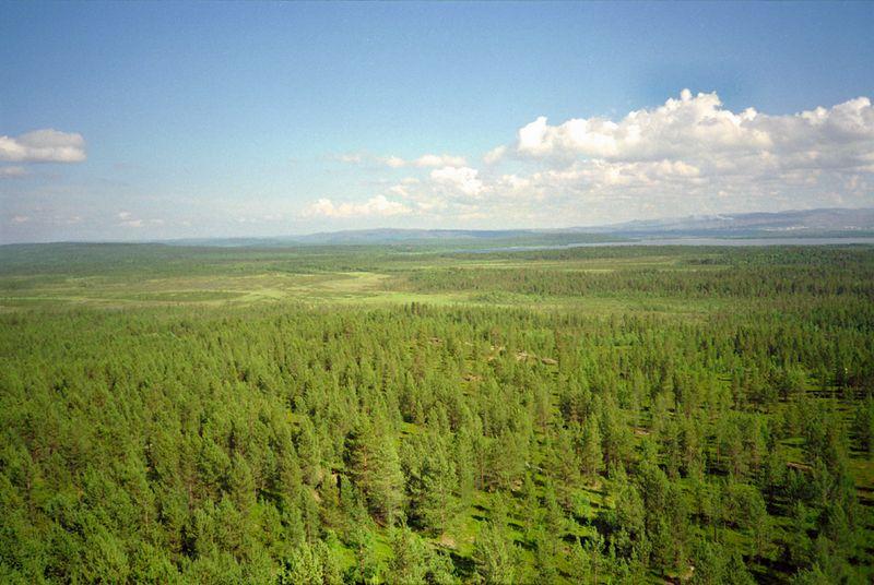 Uitzicht op Rusland