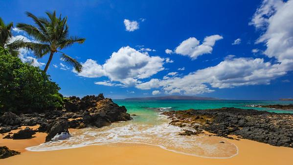 Vivid Hawaii
