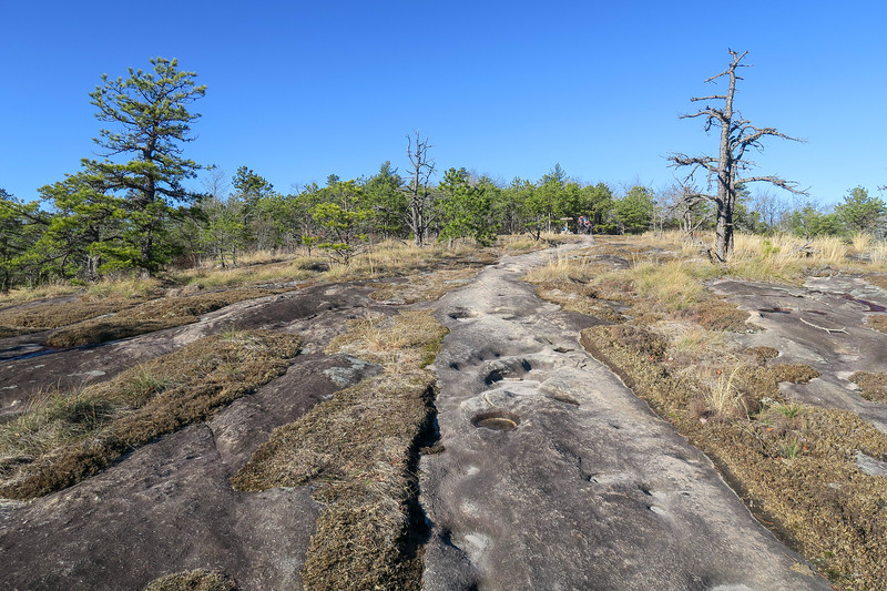 Cedar Rock Trail -- 3,030'