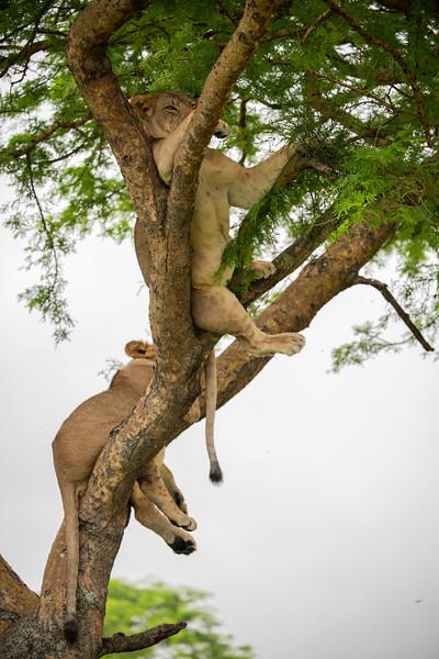 Uganda_T_QE-1361.jpg