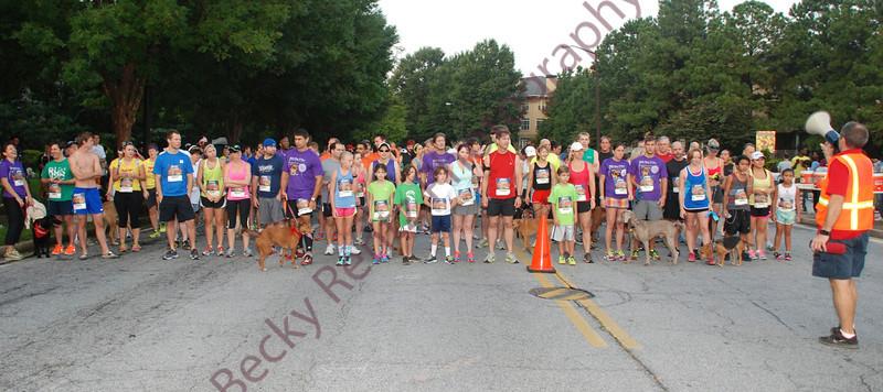 2013 Walk Wag N Run 5K