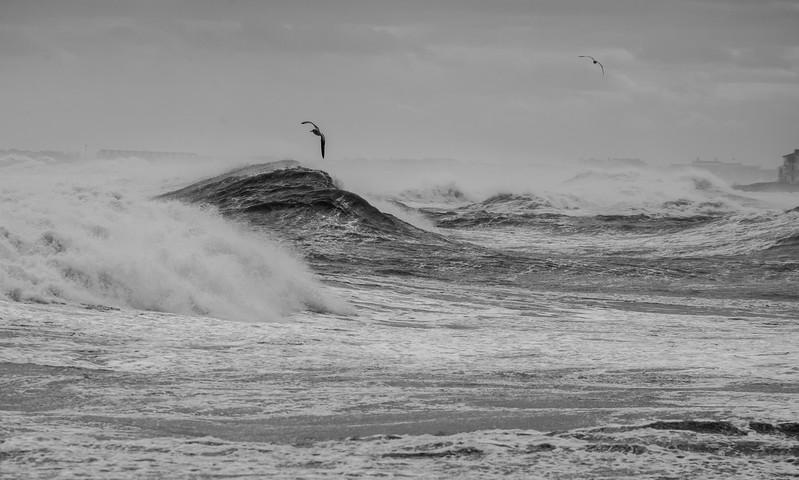 N Hampton high tide 600-25.jpg