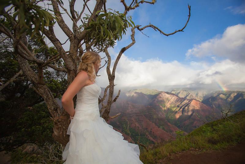 Kauai-trash-the-dress-32.jpg