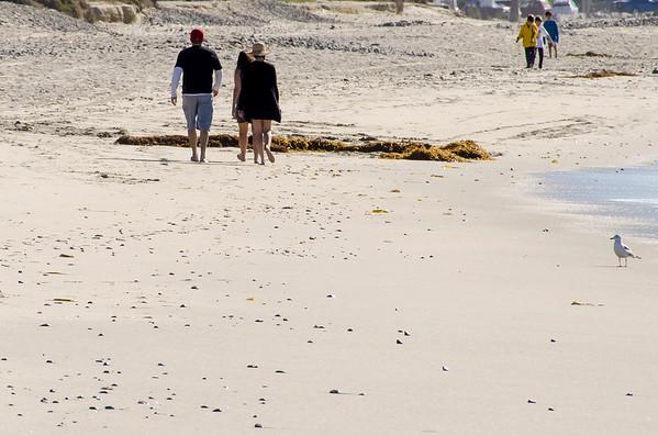Doheny State Beach Feb. 6, 2013