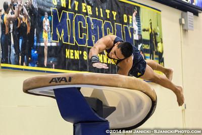 Vault from Michigan Men's Gymnastics Vs Nebraska 2-8-14