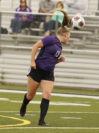 HS Sports - Woodhaven vs. Ann Arbor Huron Soccer Regional Semifinal