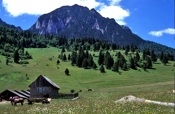 Transilvania.jpg