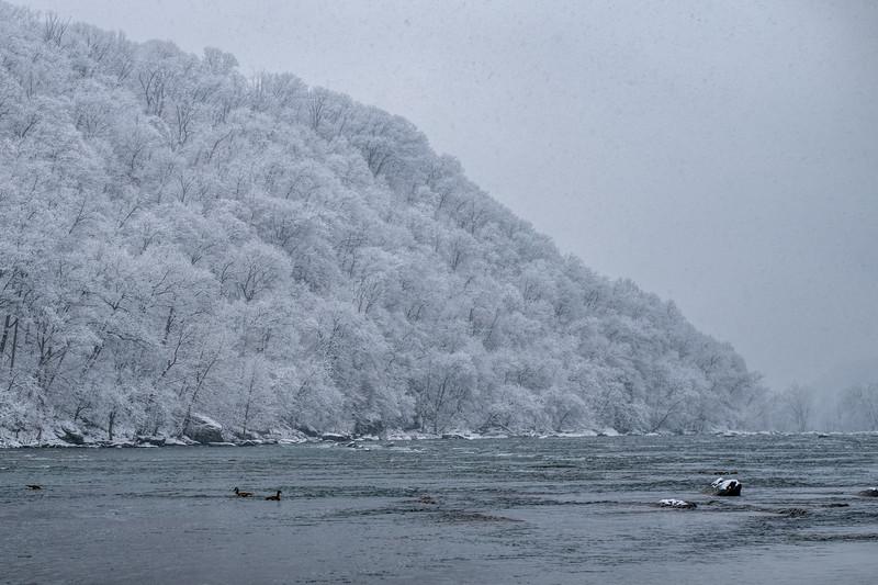 Winter Beauty Along the Shenandoah