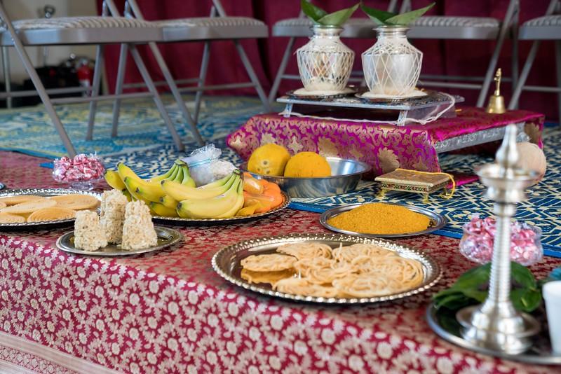 Erin_Harsha_Hindu_Wedding-45.jpg
