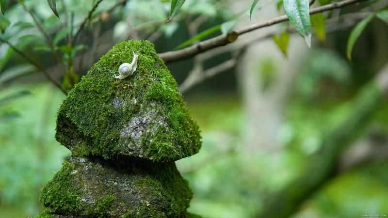 stones_1920x1080_07.jpg