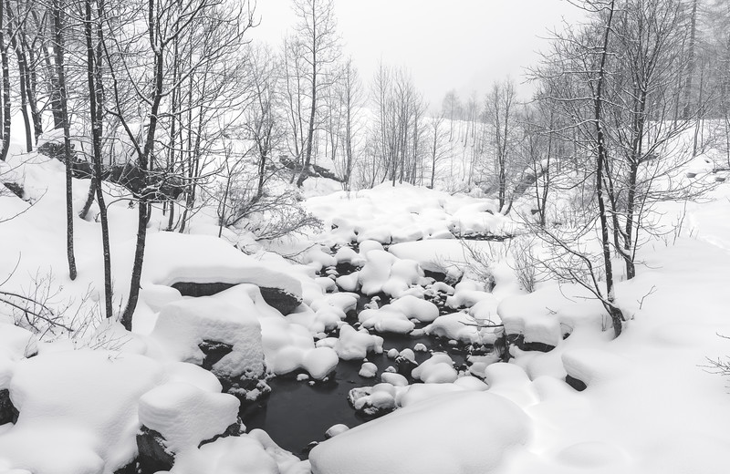 Winter Creek IV