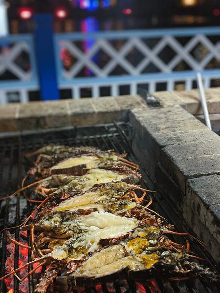 varadero lobster.jpg