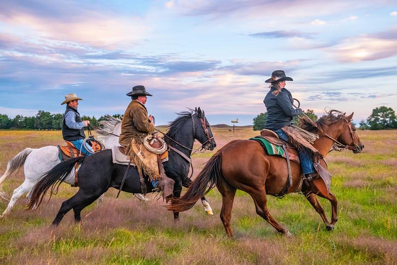 Horn Ranch-2075.jpg