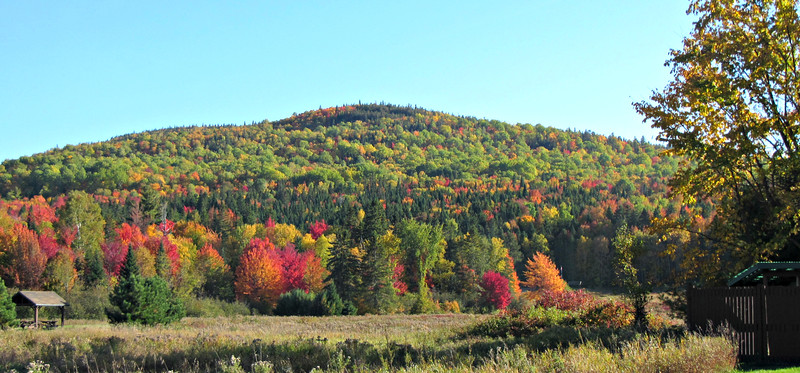 Trout Brook Mountain, from our campsite.