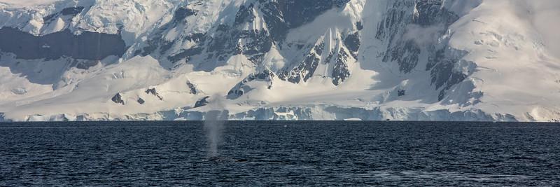 2019_01_Antarktis_03051.jpg