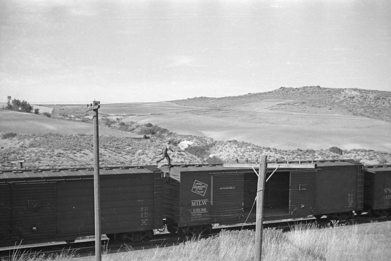 UP_2-10-2_5306-with-train_near-Cache-Jct_Aug-28-1948_008_Emil-Albrecht-photo-0243-rescan.jpg