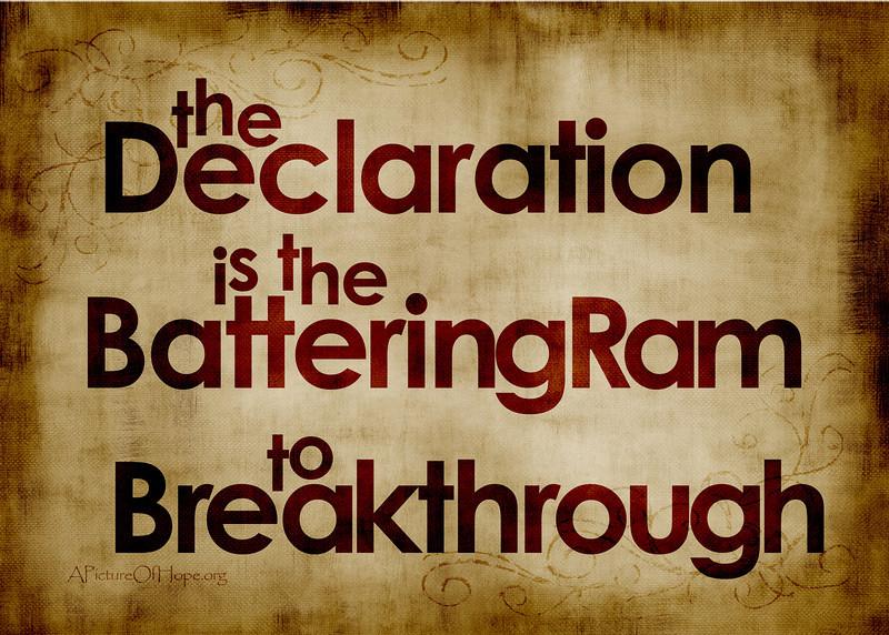 Declaration 5x7.jpg