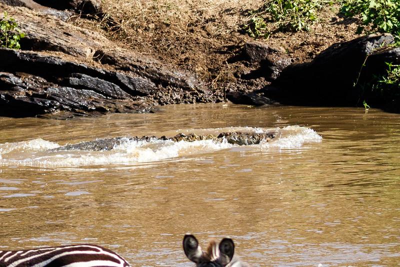Kenya 2015-02648.jpg