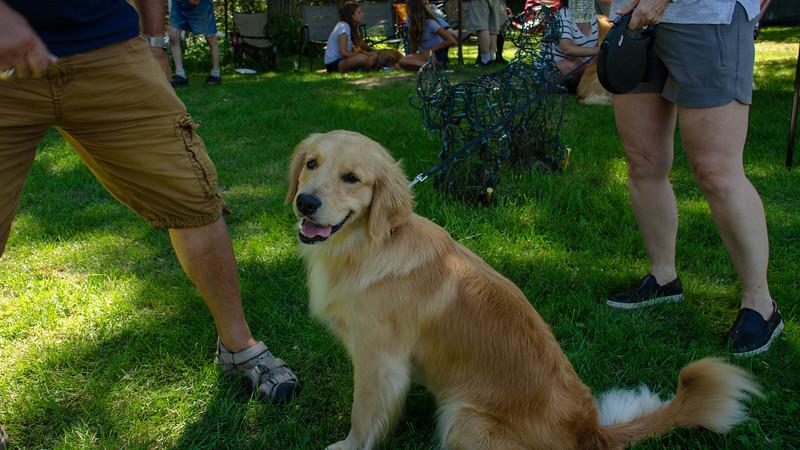 PuppyParty18-408.jpg