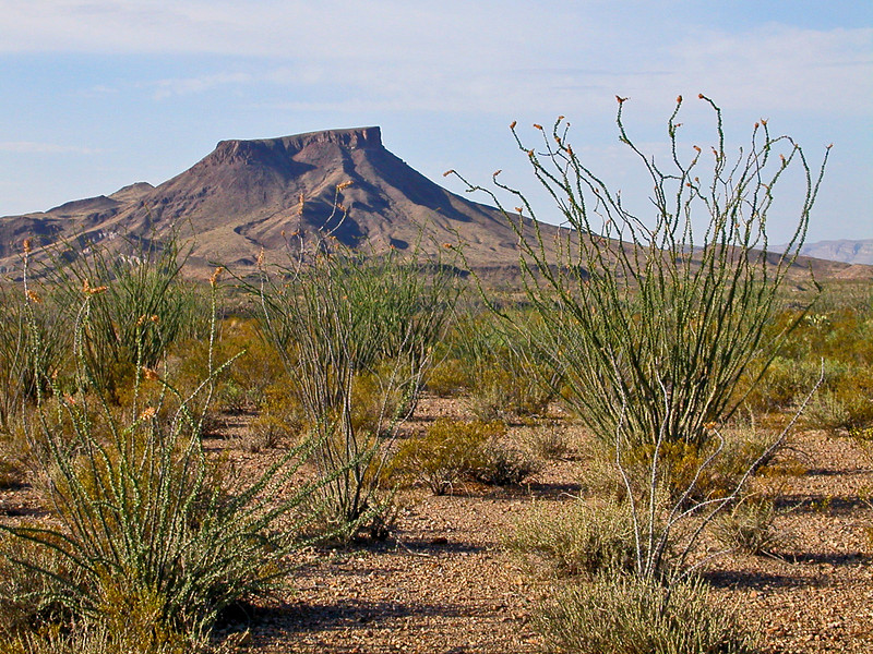 Tule Mountain.jpg