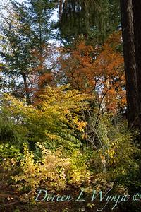 Fall garden time