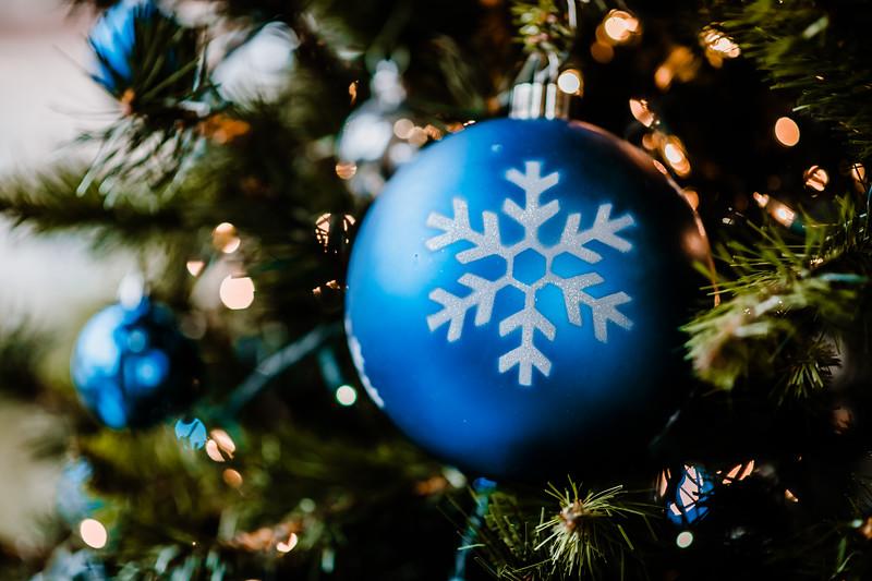 December 06, 2018 happy holidays DSC_3064.jpg