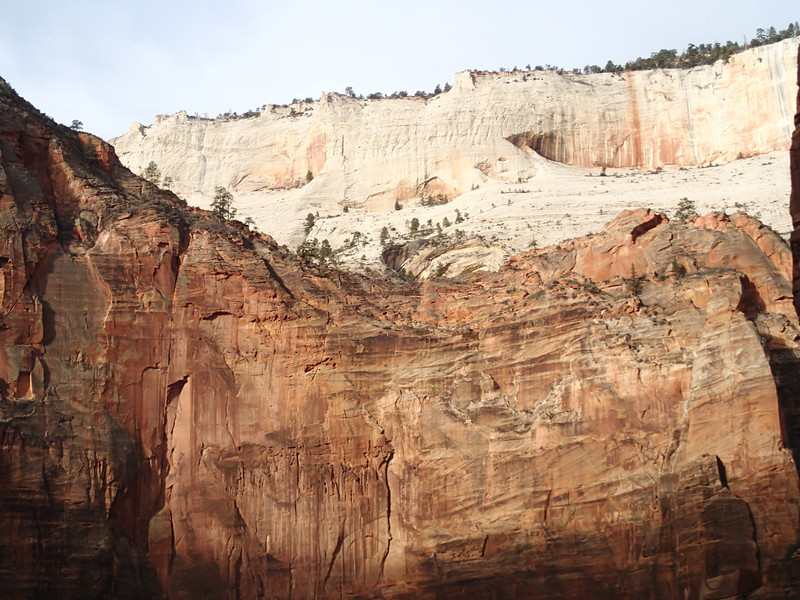 Zion National Park - Ashley 28.JPG
