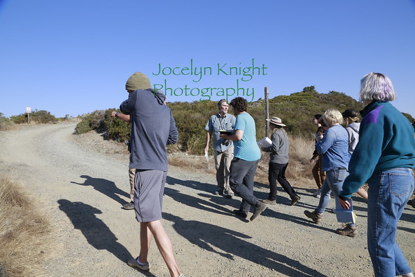 Ecology Field Trip #3 Carson Ridge, Fairfax-Bolinas Rd 10/12/2019