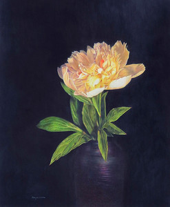 """""""Solo Performance"""" (colored pencil) by Caryn Coville"""
