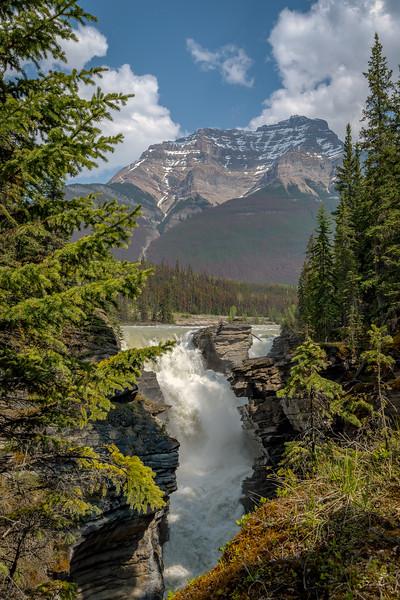 """""""Athabasca Falls"""""""